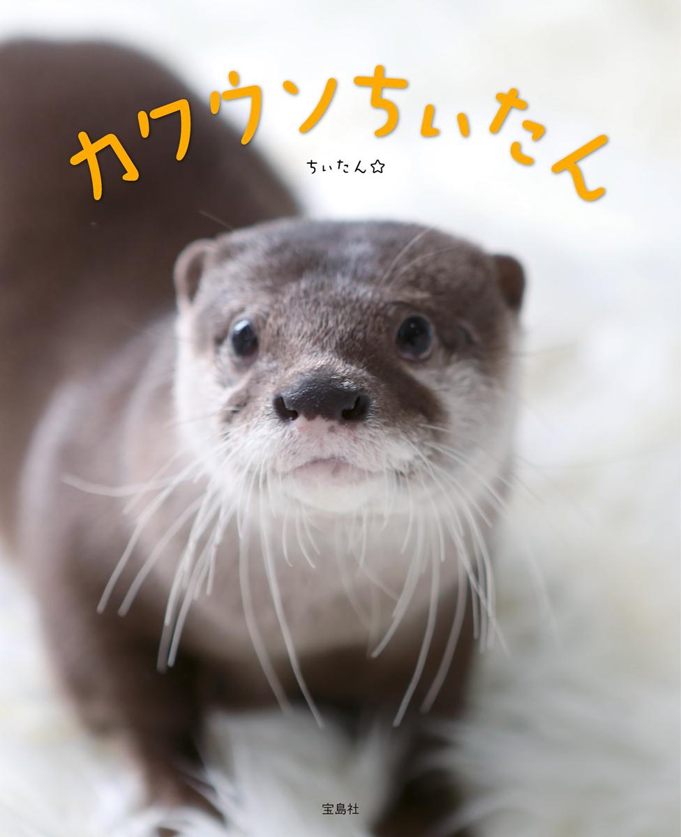 ちぃたん☆の画像 p1_33